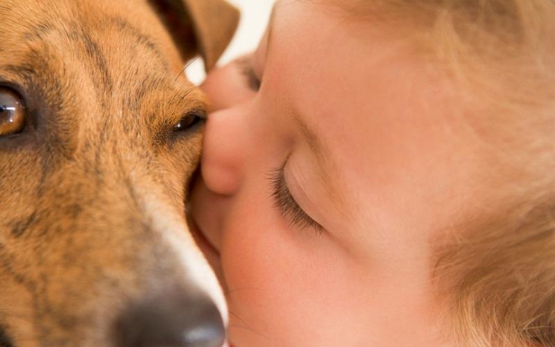 Собака каждый день спасает 7-летнюю хозяйку