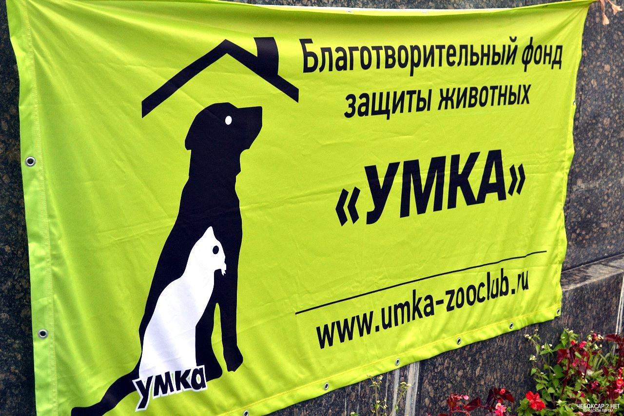 "Фонд охраны животных ""Умка"" Чебоксары"